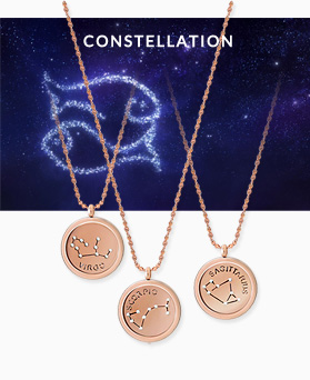1045460 - <NE435_BB11> [不锈钢] Constellation Rose Gold项链